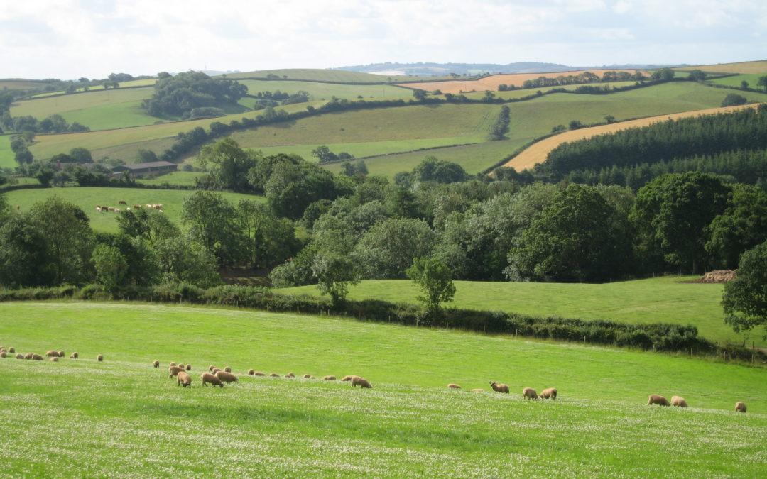 Biodiversity of Grassland webinars